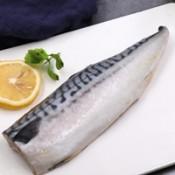 鯖魚 (1)