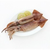 魷魚 (1)