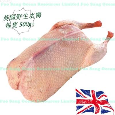 英國野生水鴨 (每隻500g+)